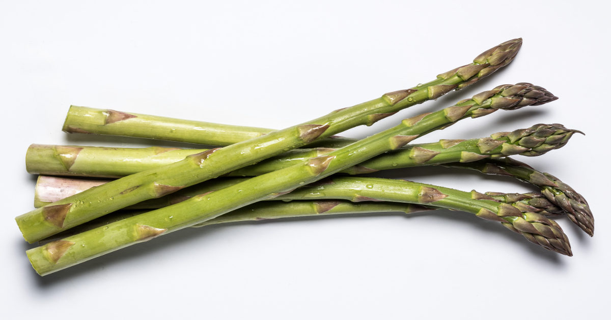 Pacific Green Asparagus – a new horizon in green varieties for warmer climates